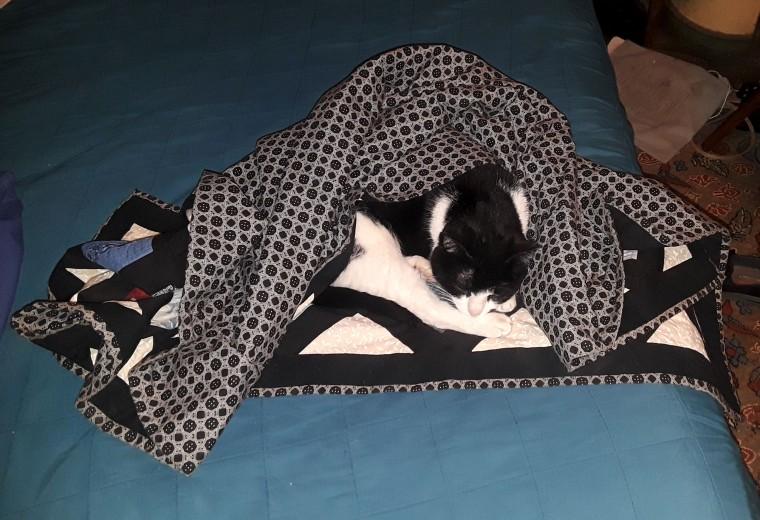 Max comforter