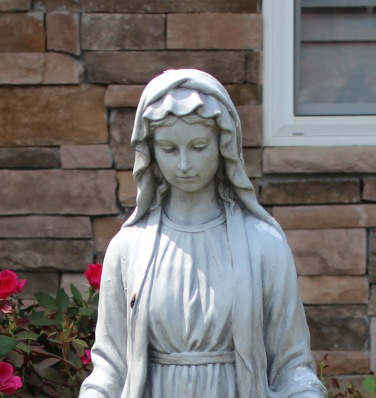 Our lady of the lawn crop