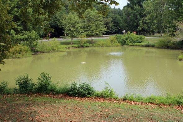Quiet Waters 2