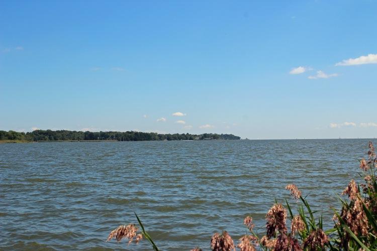 Chesapeake Bay RDP