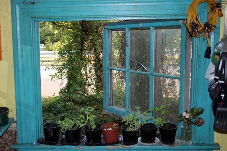 Window Monday