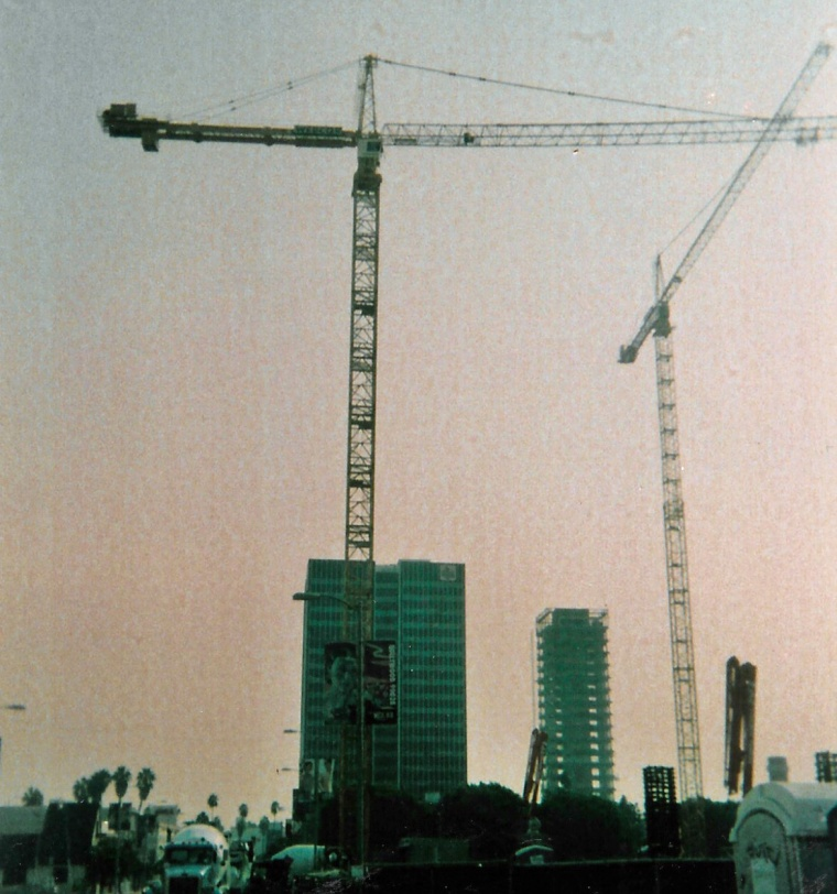Hollywood cranes crop_edited-1