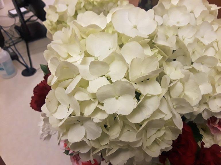 White 12 a
