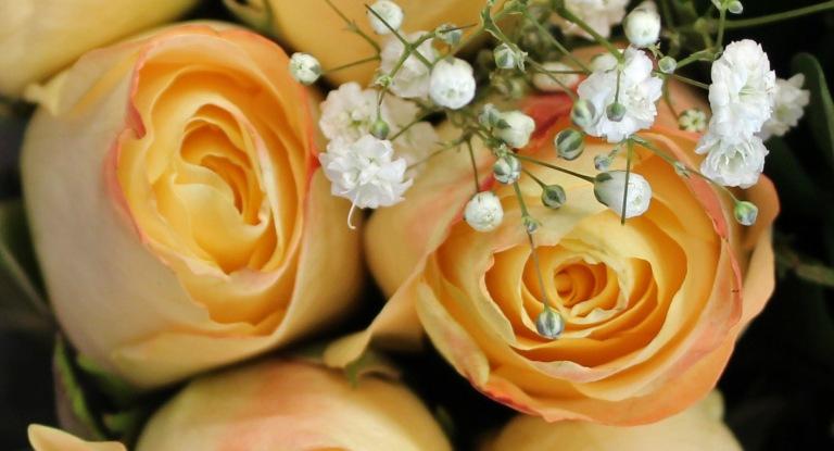 Yellow 3 Roses