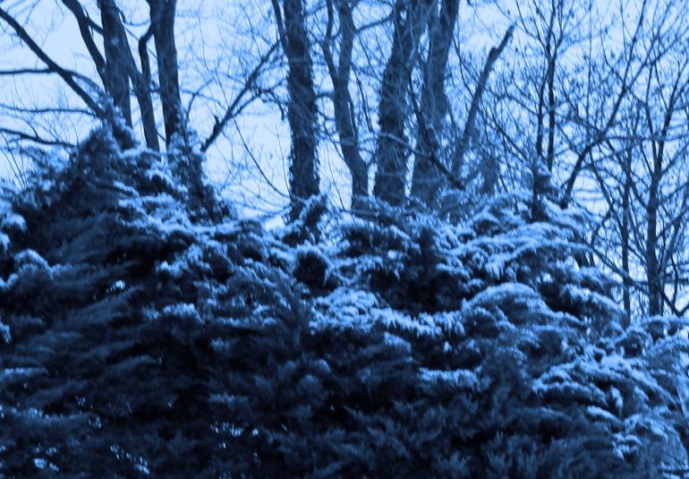 Snow 1 blue