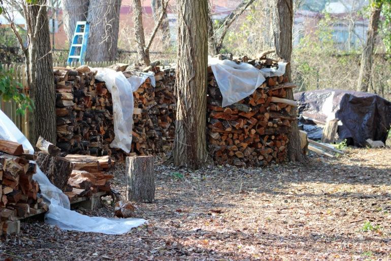 Woodpile 1
