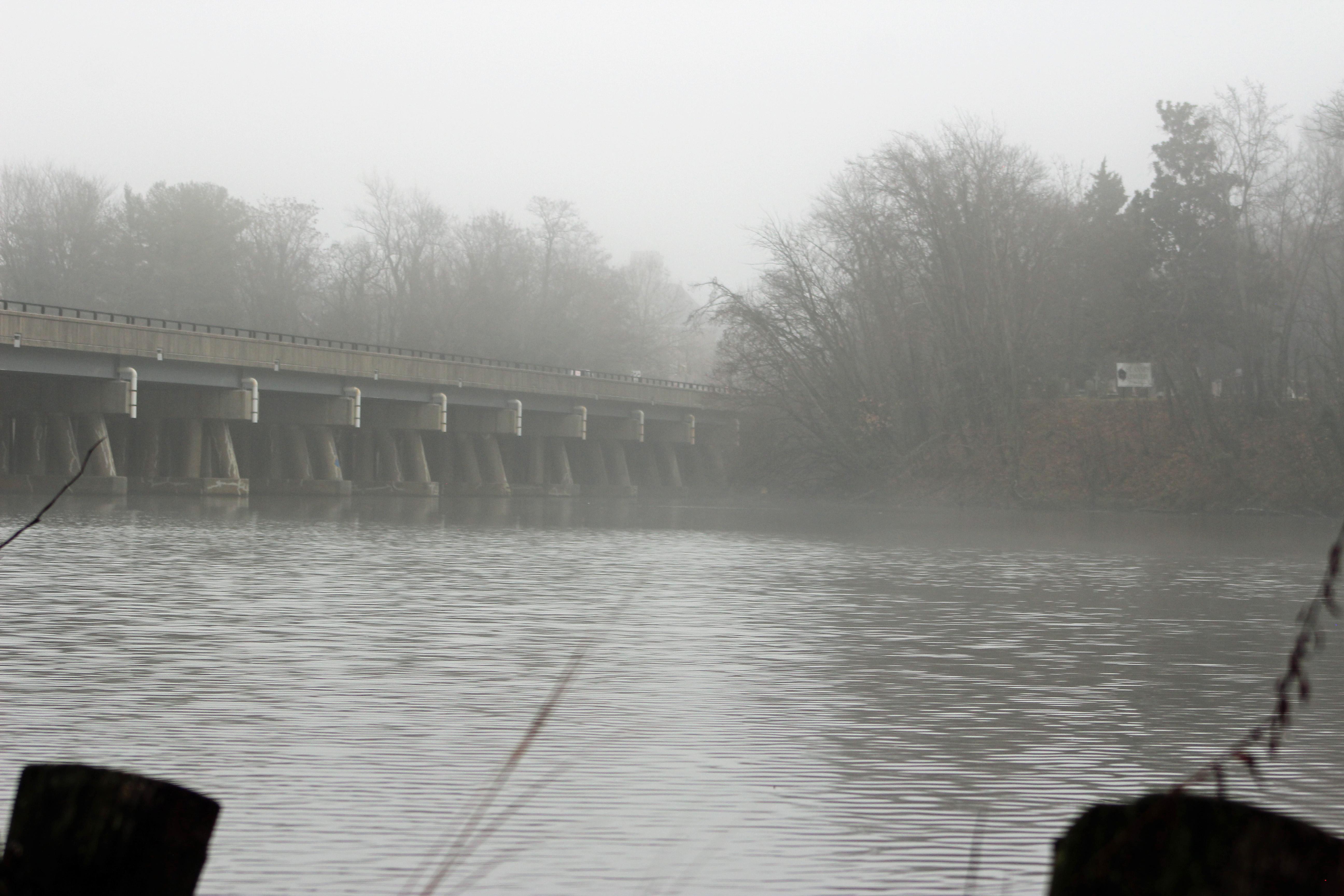 WWE 5 foggy morn