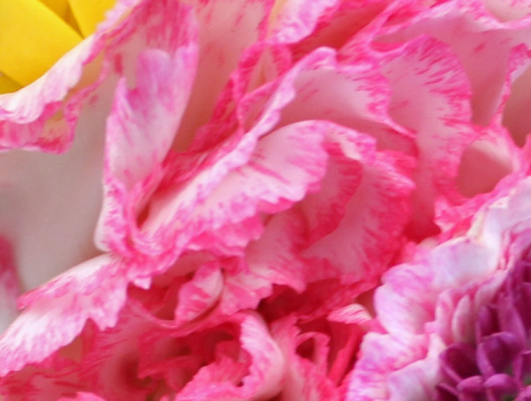 Bouquet 1 b