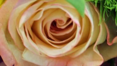 Bouquet 2 d