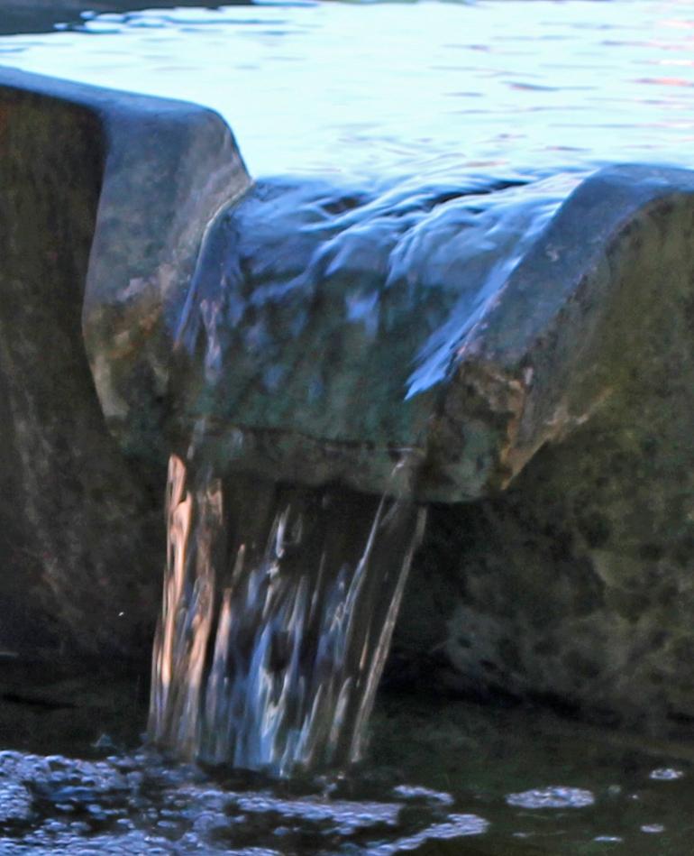 Fountain 1 crop