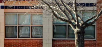 Monday window 2