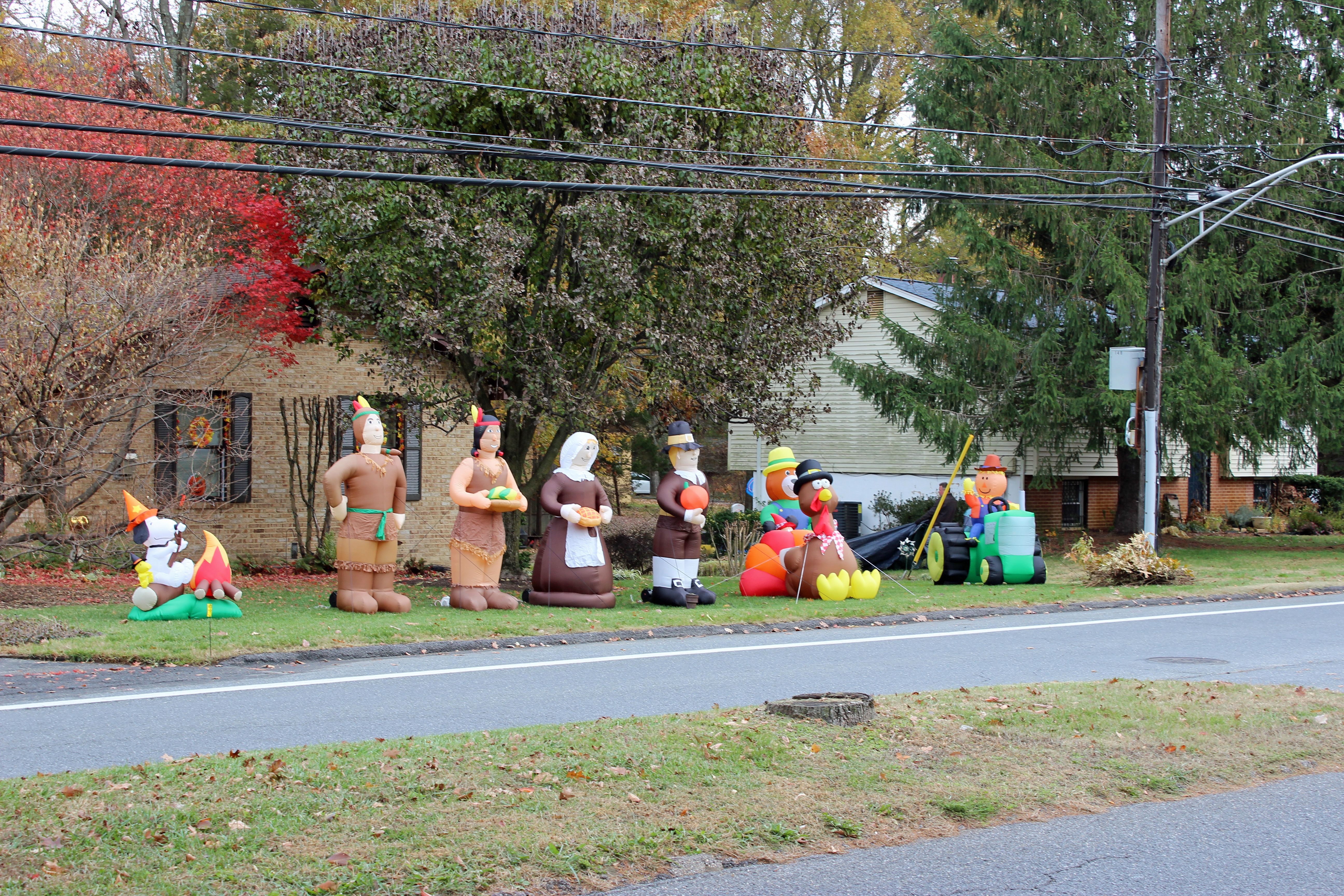 Thanksgiving decorations 1