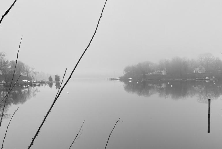 Weems foggy 2 bw