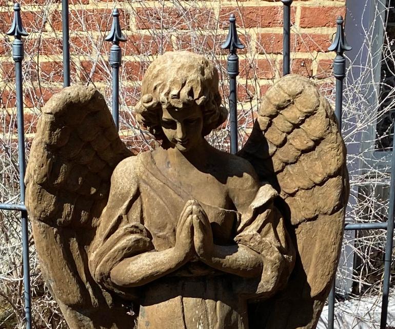 Angel crop