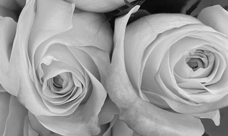 Bouquet 3_26_1 bw