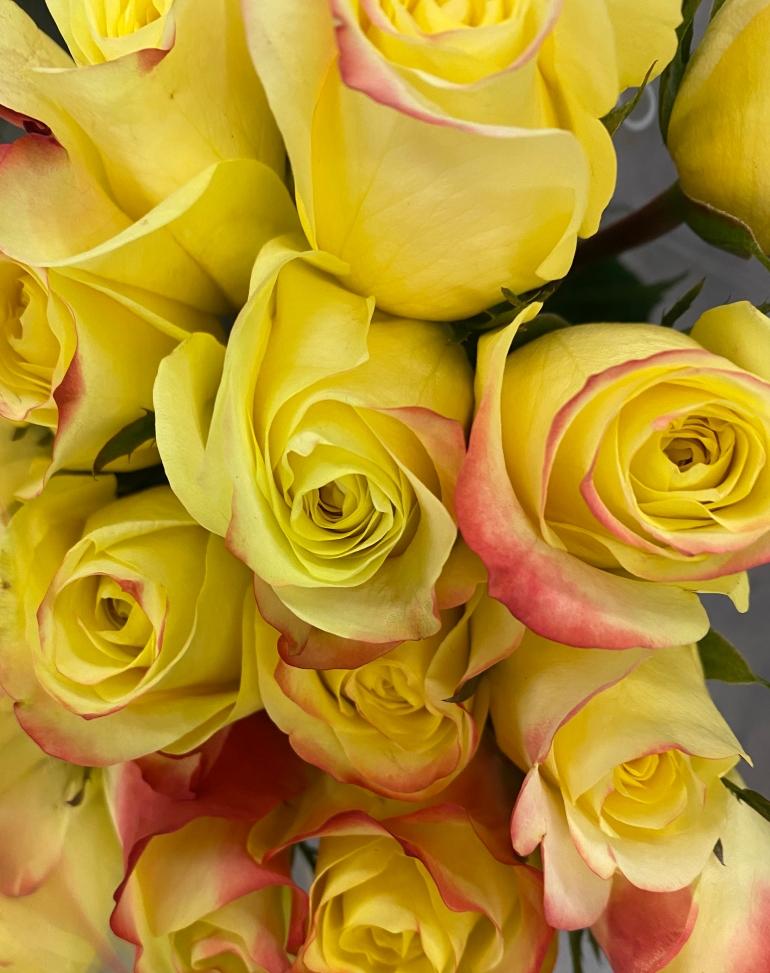 Bouquet 3_26_1