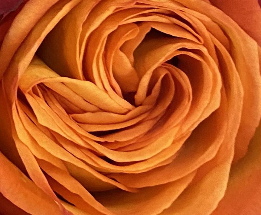 Bouquet 3_26_2 crop