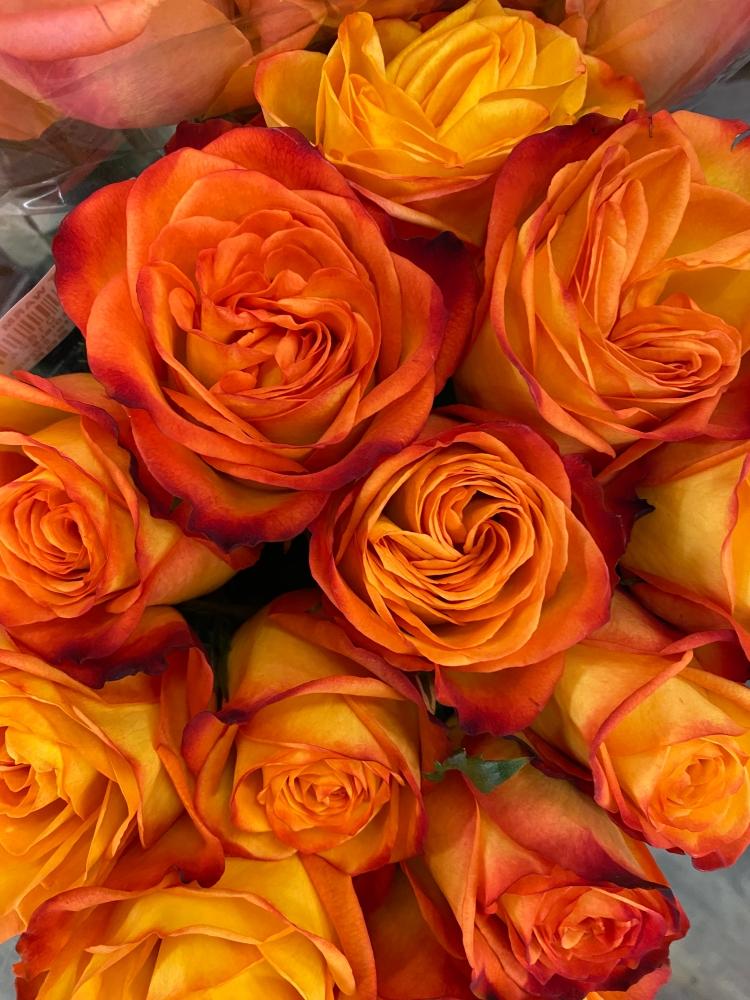 Bouquet 3_26_2