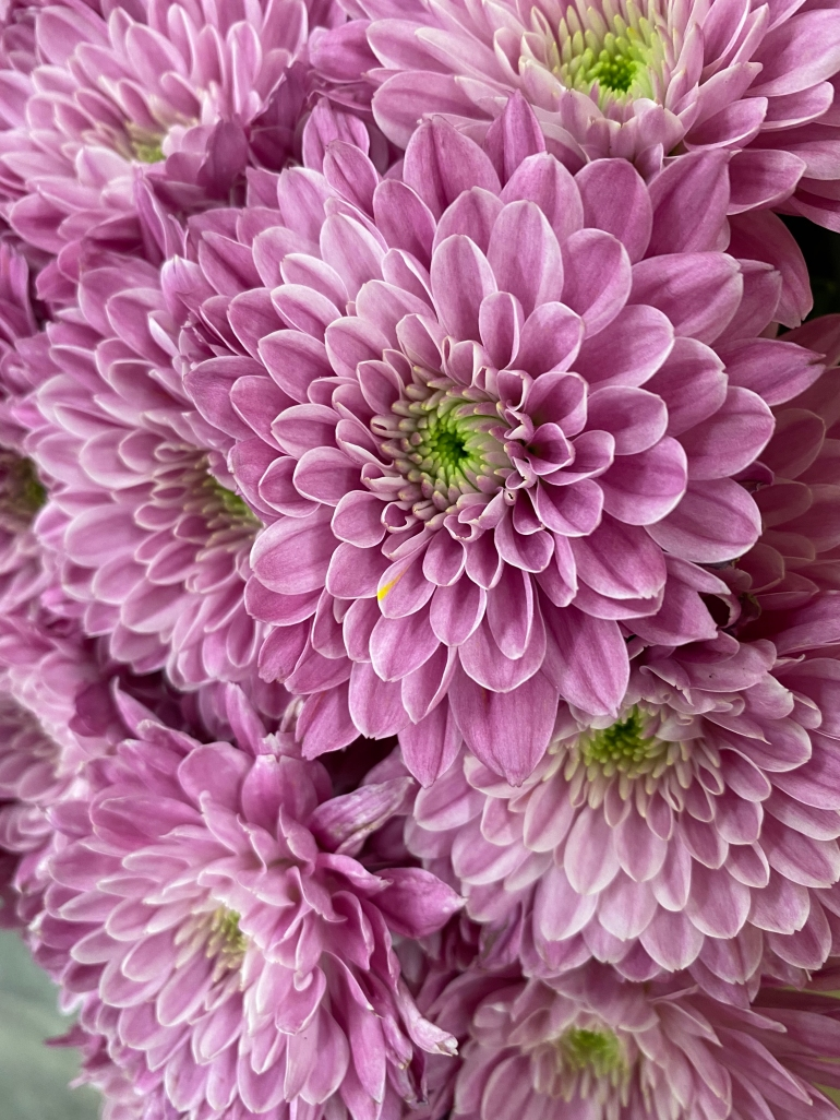 Bouquet 3_26_3