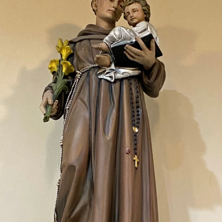Saint Anthony of Padua crop