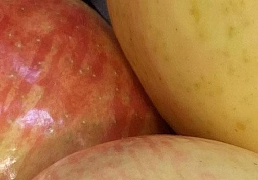 Apples 1 macro