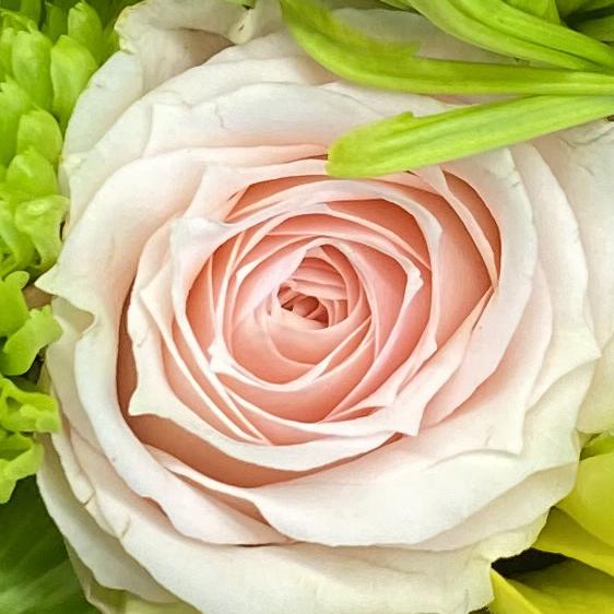 Bouquet 4_8_3 crop