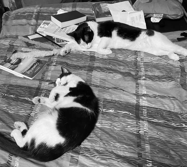 Bed 5_10_1 bw