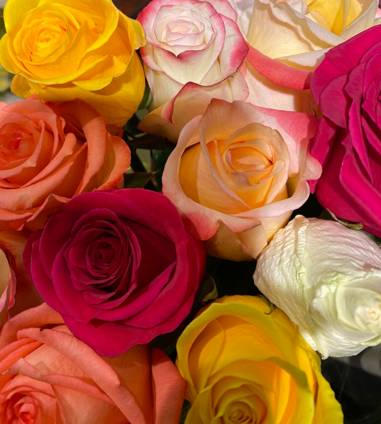 Bouquet roses 3_7_1