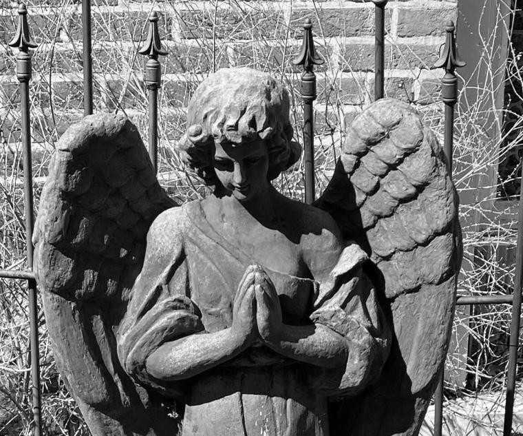 Angel bw